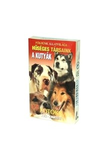 Kvartett: Hűséges társaink - A kutyák (kártya)