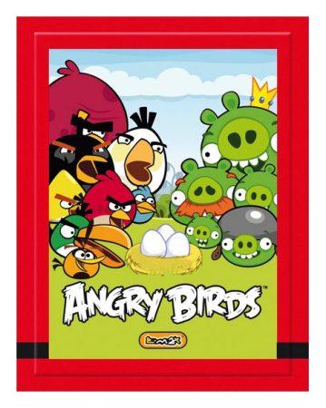 ANGRY BIRDS MATRICÁK