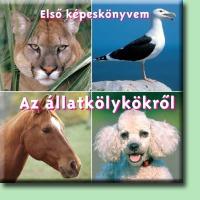 Első képeskönyvem az állatkölykökről