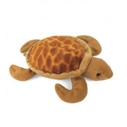 Levy, a bébi tengeri teknős
